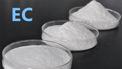 Ethyl Cellulose