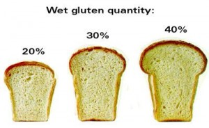Impact of Sodium Carboxymethyl Cellulose on Bread Quality-2