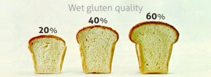 Impact of Sodium Carboxymethyl Cellulose on Bread Quality