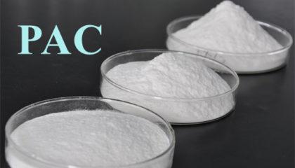 Polyanionic Cellulose